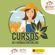 AMFAR celebra que el 85% de las alumnas de los cursos online progresa de forma positiva
