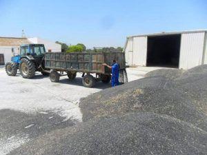 ASAJA CLM pide presupuesto para rescatar a los agricultores y ganaderos que se han quedado fuera de las ayudas a las inversiones