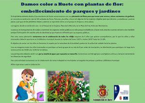 El Ayuntamiento de Huete hace un llamamiento a los niños para llenar de flores sus espacios públicos