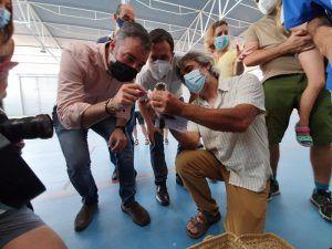El Gobierno de Castilla-La Mancha participa en un proyecto de reintroducción en la región del cernícalo primilla, especie catalogada como 'vulnerable'