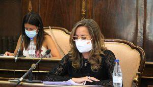 La Diputación de Guadalajara aprueba el convenio con la Junta para ayudas de emergencia social en la provincia