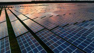 La Junta da luz verde a la instalación de una planta fotovoltaica en Guadalajara con una superficie total de 99,22 hectáreas