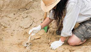 La Junta organiza diferentes actividades a lo largo de la semana para celebrar el Día de la Arqueología