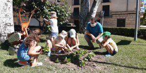 Los niños ayudan a adornar con flores las plazas de Huete