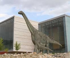El Museo de Paleontología de Cuenca, el más visitado de Castilla-La Mancha desde su reapertura