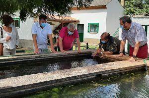 La astacifactoría de Rillo de Gallo distribuye cada año alrededor de 40.000 cangrejos de río