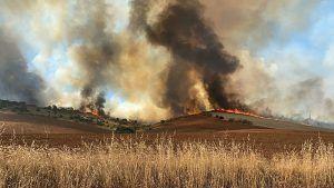 Un incendio en Madrid obliga a desalojar la urbanización Lago del Jaral de El Casar