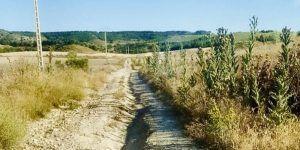 Caminos rurales de Barajas de Melo