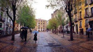 La Plaza Mayor de Cuenca no volverá a tener arbolado por razones técnicas