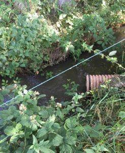 Vertidos ilegales del río Sorbe