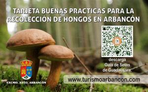 Arbancón pone en marcha la Tarjeta buenas prácticas para la recolección de hongos