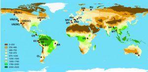 La capacidad de la biodiversidad forestal para mitigar las emisiones de CO2 podría perderse en condiciones climáticas más adversas