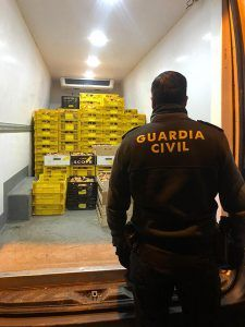 La Guardia Civil incauta una tonelada de níscalos en Alcolea del Pinar