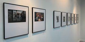 La Sala Azul del Museo de Guadalajara acoge la muestra de fotografías premiadas en el 65º Concurso Nacional de Fotografía ´Abeja de Oro´