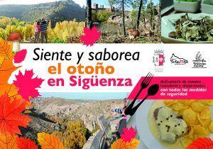 Apoyo institucional a la hostelería y turismo de Sigüenza con nuevas ayudas directas y una campaña de promoción