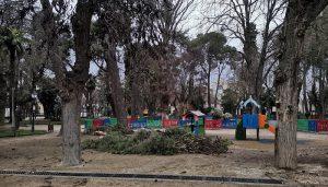 El Ayuntamiento de Guadalajara destina 146.000 euros a la poda, retirada y tratamiento de residuos vegetales  generados por el temporal Filomena