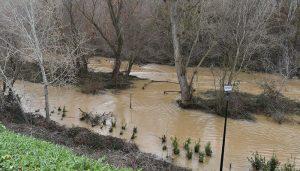 El Ayuntamiento de Guadalajara insiste a la ciudadanía en que evite acercarse al parque fluvial del Henares ante la crecida del río y la previsión de lluvias