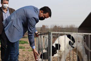 El sector agroalimentario de Castilla-La Mancha supone un 37% del total de la facturación en la exportación de la región en 2020, subiendo un 3% respecto a 2019