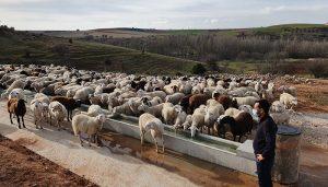 El sector primario empieza a usar las nuevas infraestructuras agrarias subvencionadas por la Diputación de Guadalajara