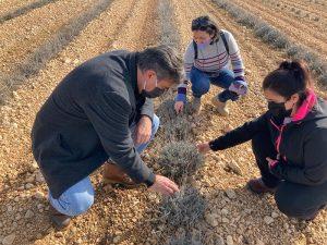 Más de 610 jóvenes se han incorporado a la agricultura en la provincia de Cuenca con la ayuda del Gobierno regional