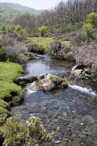 La Asociación de Turismo Sierra Norte de Guadalajara, nuevo socio de la Asociación de Ecoturismo de España