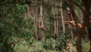 Aventura y diversión con seguridad a cinco metros sobre el suelo, en pleno pinar así es el nuevo parque de cuerdas de El Colvillo