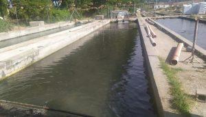El Gobierno regional destina más de 200.000 euros para el fomento de la acuicultura en la región