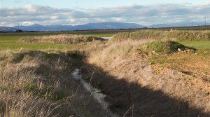 La Asociación La Campiña Verde denuncia un delito ecológico contra la laguna temporal Navajo Vedado de El Casar