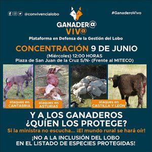 Arrecal se suma a la manifestación en defensa de los ganaderos y de la gestión del lobo ibérico