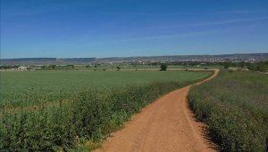 El Ayuntamiento prepara un proyecto senderista de señalización de rutas en el término municipal de Cabanillas