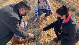 El Gobierno regional destaca el potencial de la provincia de Cuenca en la creación de proyectos innovadores dentro del sector agroalimentario