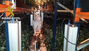 """La Guardia Civil desmantela una plantación de marihuana """"indoor"""" en la urbanización Sotolargo"""