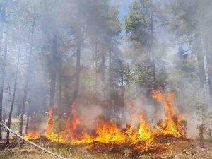 Dieciocho personas luchan contra el fuego en Archilla