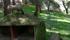 El Ayuntamiento de Guadalajara licita la gestión del nuevo bar del zoo tras una remodelación integral con una inversión de 270.000 euros