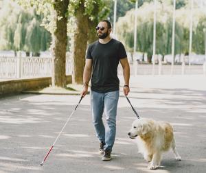 La Ley de acceso al entorno de las personas con discapacidad acompañadas de perros, más cerca