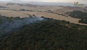 Controlado un incendio en Espinosa de Henares