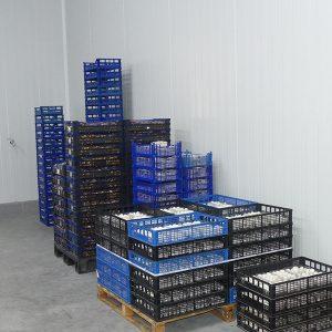 CEOE-Cepyme Cuenca remarca que las exportaciones suman casi 100 millones de euros más a mitad de año sobre 2020
