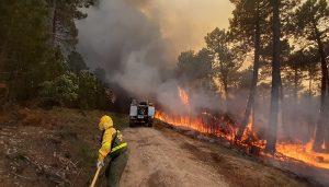 El incendio de Víllora, entre los más grandes en lo que va de año en toda España
