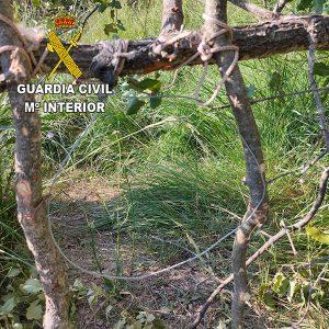 El SEPRONA denuncia a un vecino de Romancos por usar medios prohibidos de caza