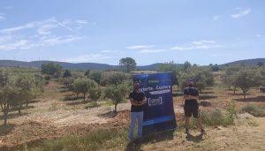 Invierte en Cuenca apoya la iniciativa de plantación de trufa en la Graja de Campalbo