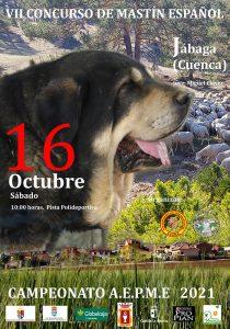 cartel 2021 prensa | Liberal de Castilla
