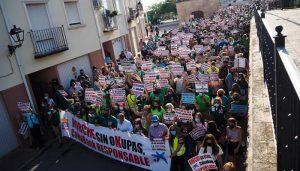 El PP de Guadalajara participará este sábado en la concentración de afectados por la ocupación ilegal que tendrá lugar en Madrid