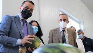 El próximo lunes se publica la orden de ayuda de 18 millones de euros del Gobierno regional para paliar los daños en el olivar afectado por Filomena