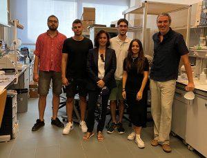 Investigadores de la UCLM desvelan un mecanismo neuronal de control del aprendizaje y la memoria reciente