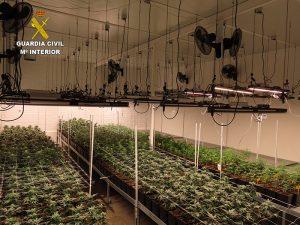 La Guardia Civil de Cuenca localiza una nave con más de 1400 plantas de marihuana en el Polígono Los Palancares
