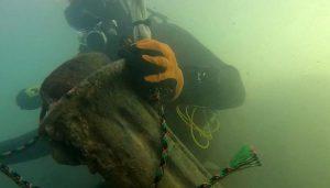 Segunda limpieza del fondo subacuático del río Tajo bajo el puente de Trillo