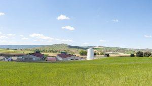 UCLM, ASAJA, ICPOR e ITAP impulsan la innovación en la gestión del estiércol líquido de porcino