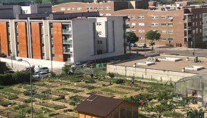 Abierto el plazo de la convocatoria de uso de los Huertos Sociales de Cuenca