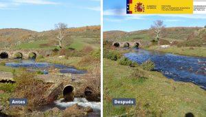 La CHT retira el antiguo vado del Cerezo en el río de la Hoz Seca a su paso por el Hayedo de Tejera Negra